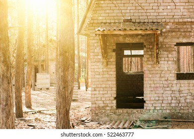 Old brick house in a pine forest in the sunlight