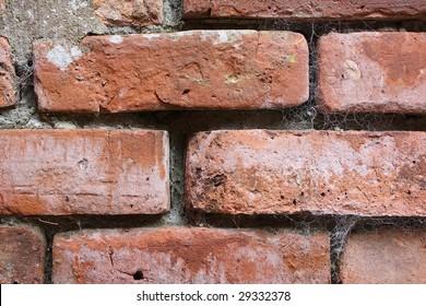 Old brick wall with cobwebs.