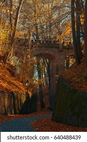 old bridge in a autmn forest in Gera