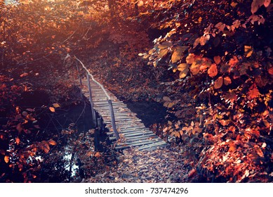 Old bridge in the autumn landscape