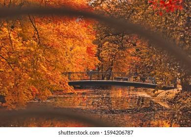old bridge with metal railing in a dark autumn park