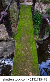 old bridge with moss