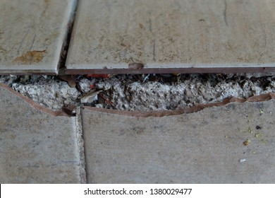Asbestos Flooring Images Stock Photos Vectors Shutterstock