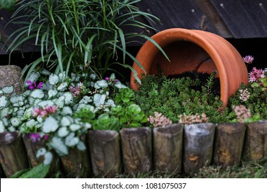 An old broken terracotta pot has been used as a decoration in a planting.