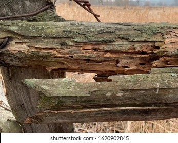 Old, broken wooden fence, close up. Rotten beams on a rustic fence. Rural fence made of wood and wire.