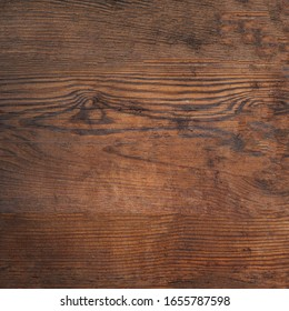 Old brown bark wood texture. Natural wooden background