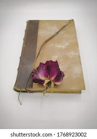 Old brown book with a bookmark inside and a faded pink rose on it. Withered dry red rose on the vintage book. Concept of fading feelings in love, nostalgia and bitter memories or bygone joys