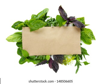 Old brown paper with fresh herbs, isolated on white