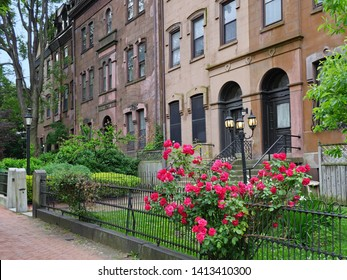 old brownstone type apartment buildings on a shady street with front gardens and rose bush
