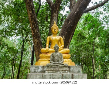 Old Buddha under the tree