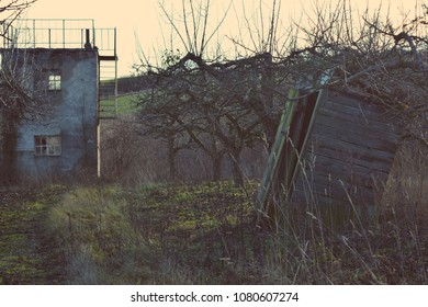 Old buildings on the edge of an apple orchard.