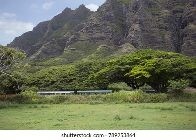 Old Buses parked in Front of Mountains and Lush Forest in Hawaii