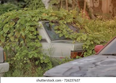 Old car parked left.