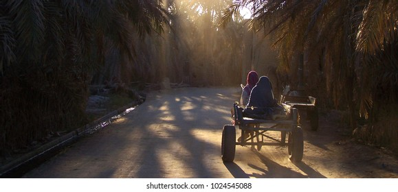 Old Cart in the evening light in the Siwa Oasis in Egypt