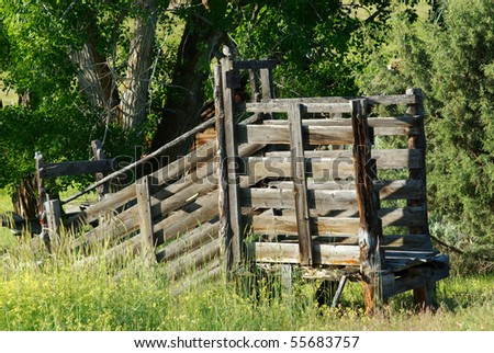 Old Cattle Chute Used Load Livestock Stock Photo Edit Now 55683757