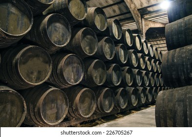 Old cellar with barrels for wine or whiskey