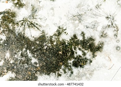 Old cement surface background texture