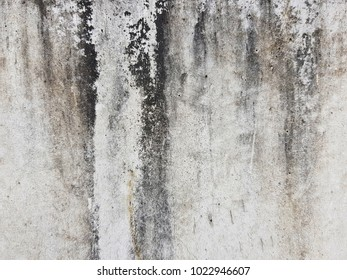 Old cement wall