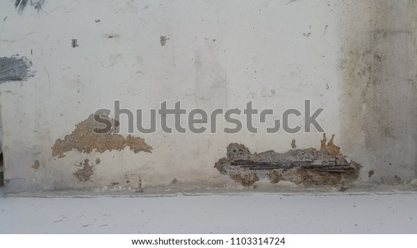 Old cement wall  for background texture