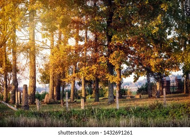 Old cemetery in autumn, fall and sunlight