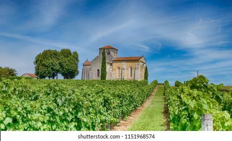 old chapel in the vineyards of cognac