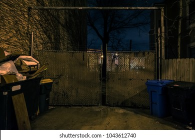An old city side street gate with dumpsters and a dramatic tree at night