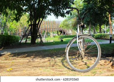 Old or classic bike in the garden