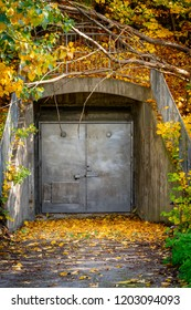 Old closed grungy steel door underground entrance outdoors covered with colorful autumn leafs.