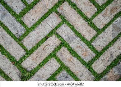Old cobblestone background with grass / Brick with grass / tiles with grass / stone way in green grass / Bending garden stone path / garden stone path with grass