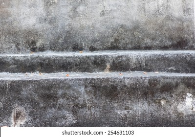 The old concrete wall.