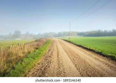 An old country dirt road through the village and fields to the forest in a fog. Autumn rural scene. Transportation, agriculture, farm, ecology. countryside, ecotourism, road trip, logistics, distance