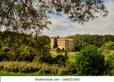Old country house surrounded by cypress trees and framed by the branches of a pine tree, Collserola, Catalonia