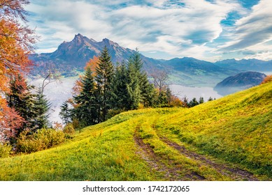 Old country road in the foggy mountains. Coloruful morning view of outskirts of Stansstad town, Switzerland, Europe. Nice autumn scene of  Lucerne lake. Wonderful landscape of Swiss Alps.