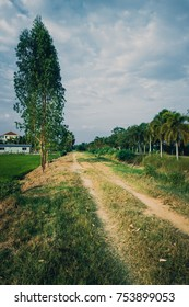 Old country road and paddy field in Thailand