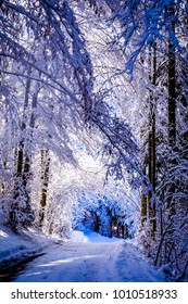 old country road in winter - european alps