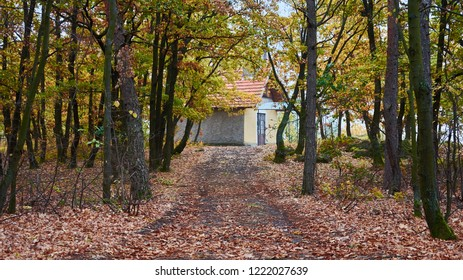 Old countryside house in forest autumn.