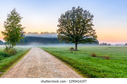 Old countryside road at dawn, Europe