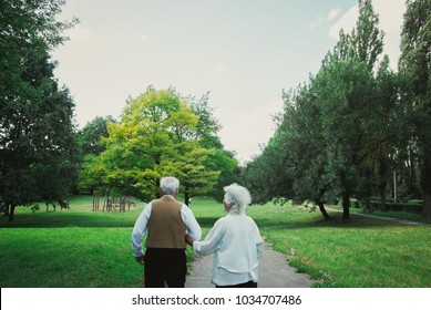 Old couple is walking away in the green park. Grandmother and grandfather at their golden wedding celebration. Grandma and grandpa wedding anniversary. Fifty years together. Love story of elderly.