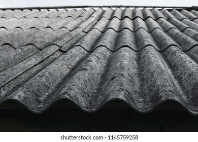 Old and covered with lichens wavy roof slates covers the barn at countryside