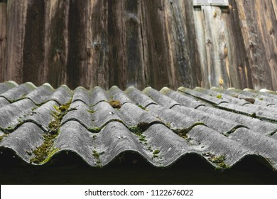 Old and covered with moss wavy roof slates covers the barn