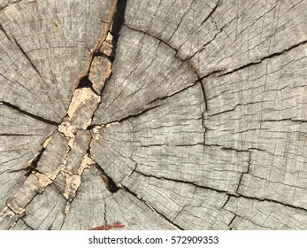 Old crack wood background texture