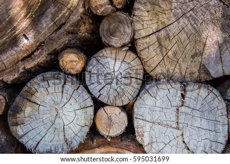 Old Cracked Tree Stump Background Tree Stock Photo Edit Now
