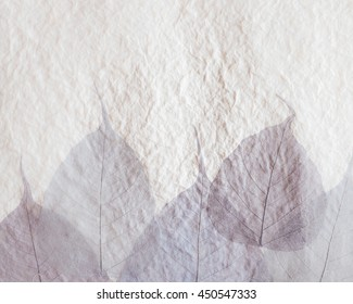 Old craft recycled light brown white mulberry paper texture background with dried leaves texture decorated.