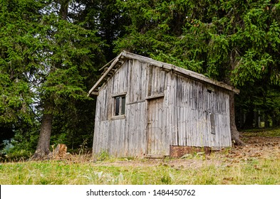 Old and creepy wooden shack hidden in the woods