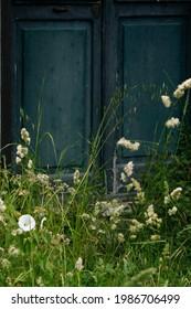 old dark green door in the backyard with grass