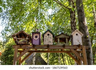 Old decorative bird feeders and wooden birdhouses