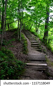 Old decrepit wooden stairs within a Wisconsin forest pathway.  The hazardous steps have a small broken bridge just in front of the stairway.