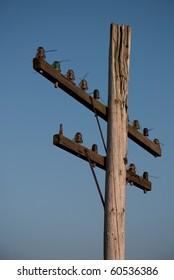 Old decrepit wooden telephone pole against a gradient blue sky.