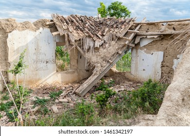 Old demolished house with cob walls and a fallen reed roof and vegetation grown inside in a Romanian village.