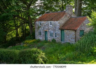 An old derelict cottage in an overgrown garden